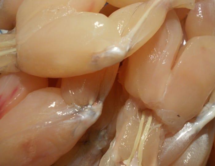 Cuisses de grenouilles fraîches